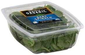 Taylor Baby Spinach
