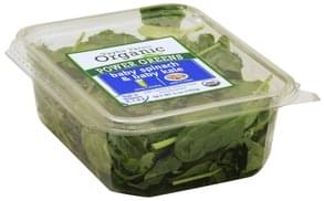 Taylor Farms Baby Spinach & Baby Kale Organic