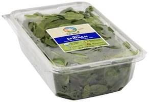 Full Circle Spinach Organic, Baby