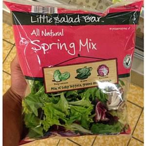 Little Salad Bar Spring Mix