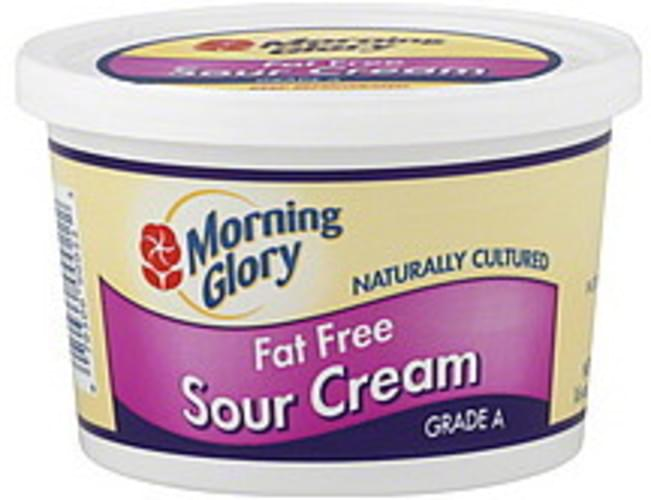 Morning Glory Fat Free Sour Cream - 16 oz