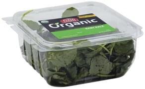 Fresh Express Baby Kale Organic