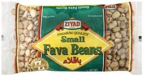 Ziyad Fava Beans Small