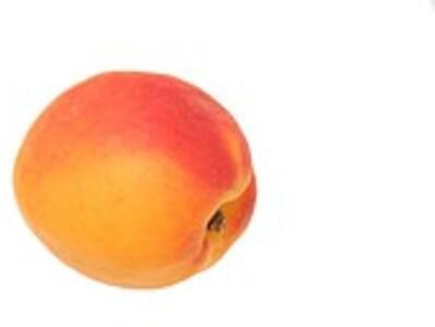 USDA Apricots