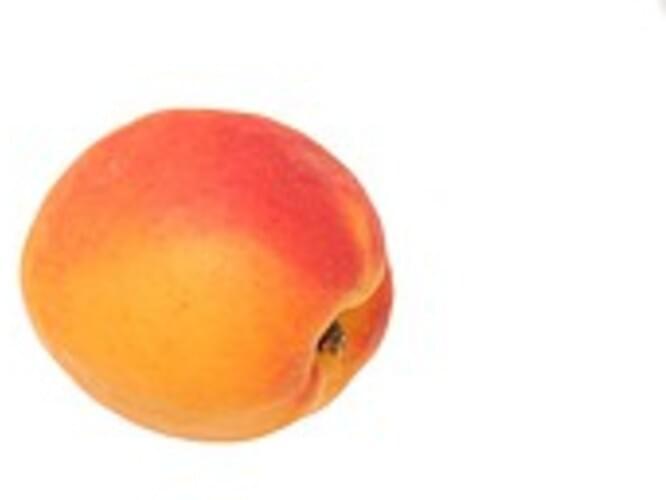 USDA Apricots - 1