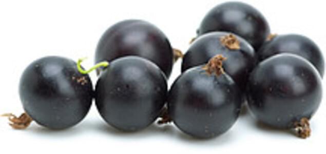 USDA Currants  european black