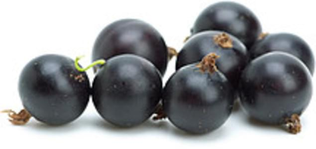 USDA Currants  european black