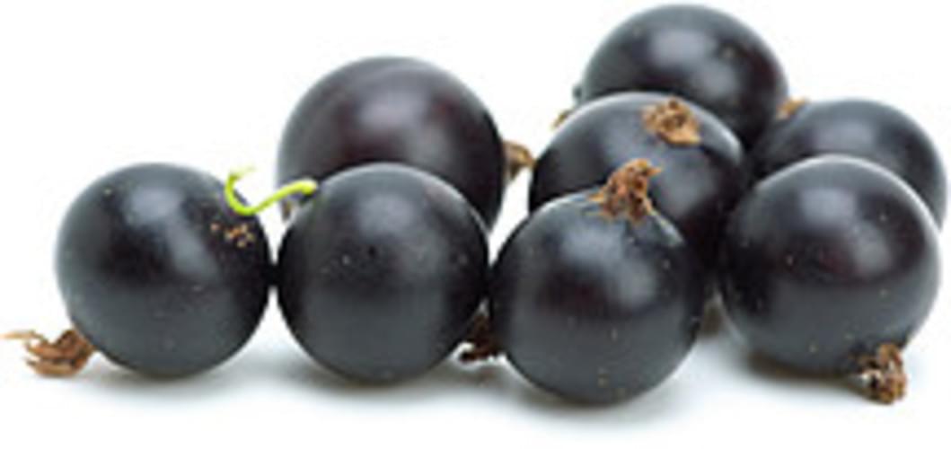USDA  european black Currants - 1 c