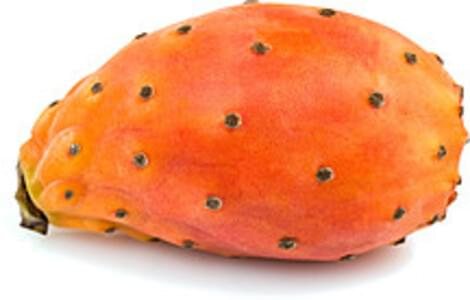 USDA Prickly pears