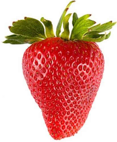 USDA Strawberries - 1