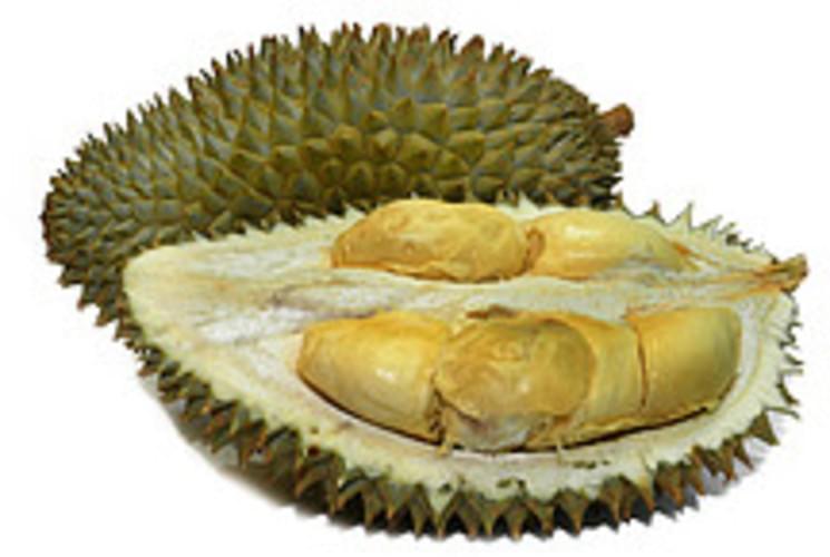 USDA Durian - 1 c