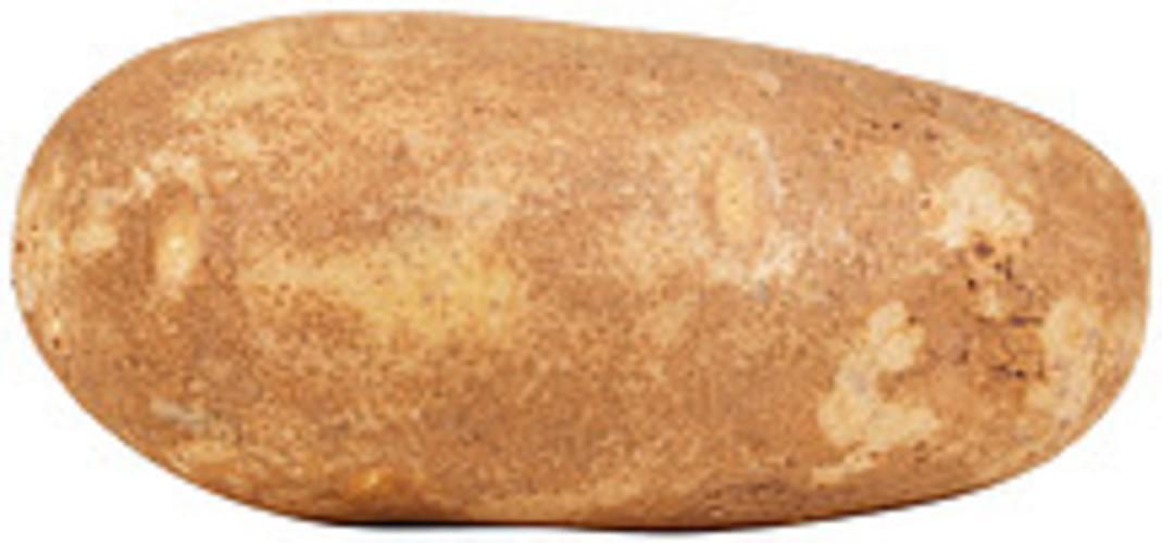 USDA  russet  flesh and skin Potatoes - 0.5