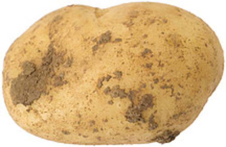 USDA  white  flesh and skin Potatoes - 0.5