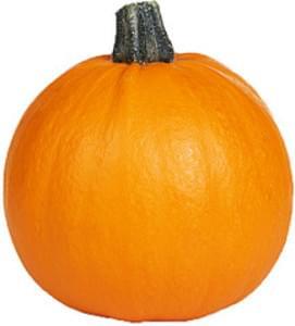USDA Pumpkin
