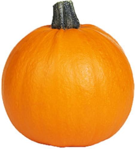 USDA Pumpkin - 1 c