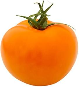 USDA Tomatoes  orange