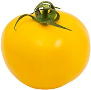 USDA Tomatoes  yellow