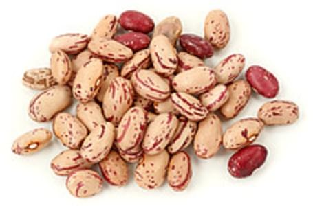 USDA Beans  cranberry (roman)  mature seeds