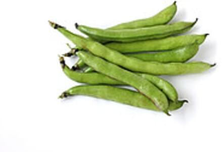 USDA Broadbeans (fava beans)  mature seeds