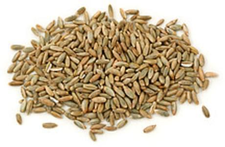 USDA Rye grain