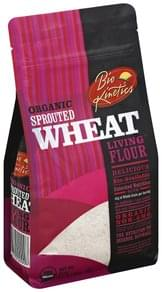 Bio Kinetics Flour Living, Organic, Sprouted Wheat