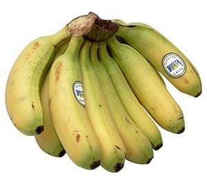 Wegmans Fresh Fruit Baby Bananas