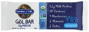 Garden Of Life Gol Bar Blueberry