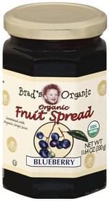 Brads Organic Fruit Spread Organic, Blueberry