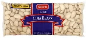 Giant Lima Beans Large