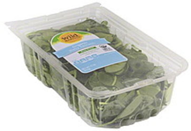 Wild Harvest Baby, Organic Spinach - 11 oz