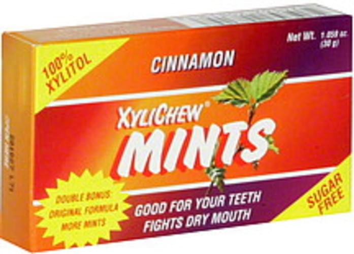 Xylichew Sugar Free, Cinnamon Mints - 1.06 oz