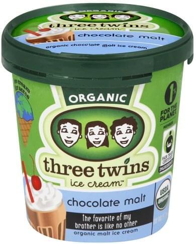 Three Twins Chocolate Malt Ice Cream - 1 pt