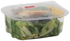 Giant Salad Southwest Style